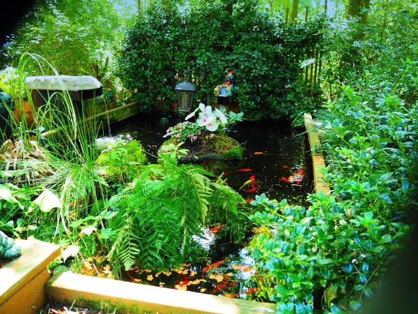 Name:  pond1.jpg Views: 8 Size:  111.5 KB
