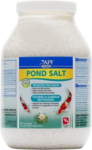 Name:  salt.jpg Views: 59 Size:  64.1 KB